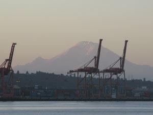 cranes of doom